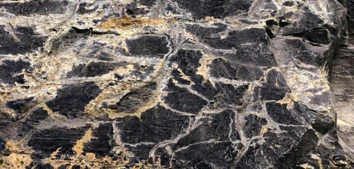 073-Carbonia-blog-feature