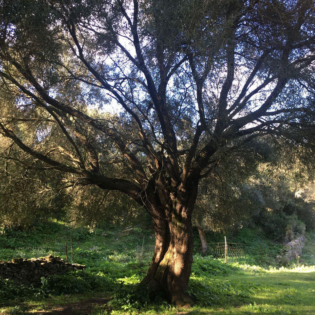 079-Piscinas-blog-6