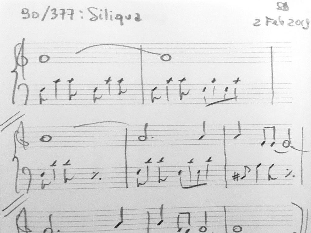 090-Siliqua-score