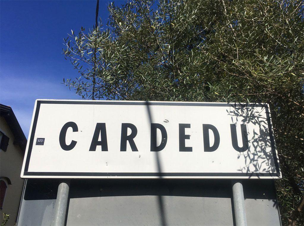 115-Cardedu-blog-2