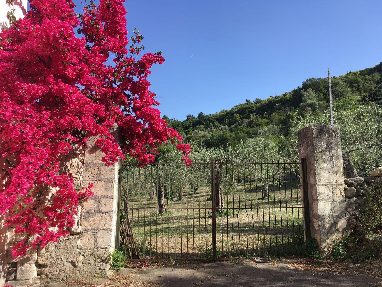207-Muros-blog-2