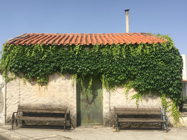 209-Florinas-blog-5